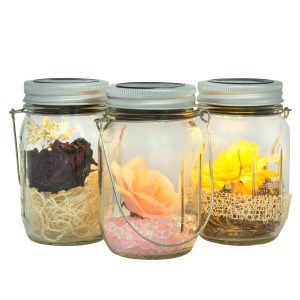 Solar Jar Light Set Small 3 pc-2686